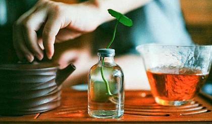 互动吧-周日9:30小小茶艺师~7个名额
