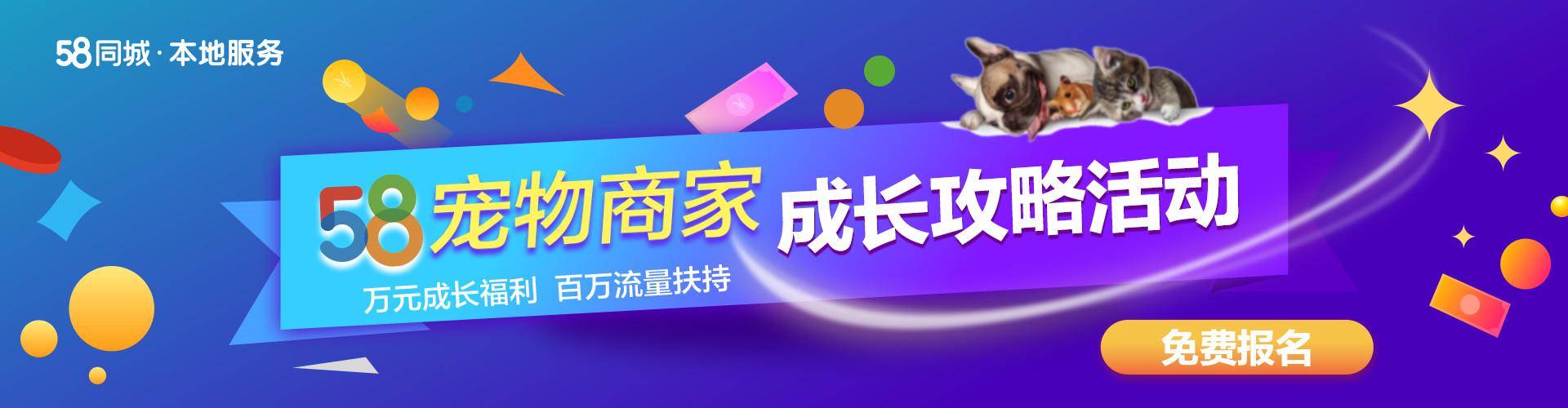 【万元福利扶持】|58宠物商家成长计划培训