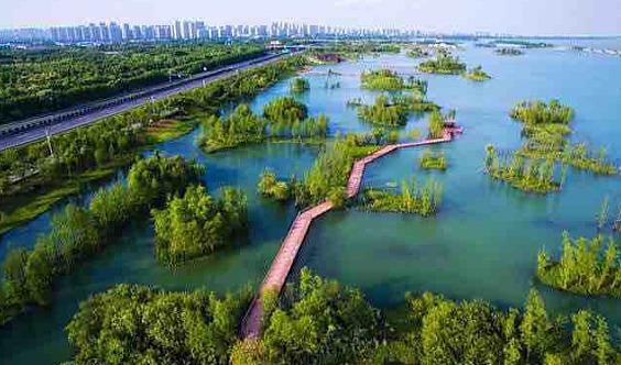 贡湖湾湿地公园踏青活动