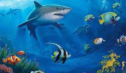 """互动吧-""""海底世界""""写生之旅"""