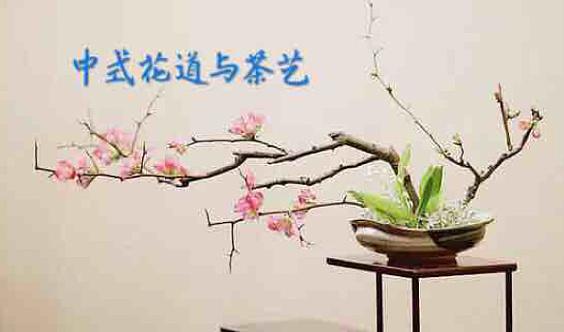 中式花道与茶艺:以花修己,以茶暖心
