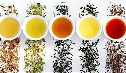 互动吧-12.15樊登读书线下活动-生活,从一杯茶开始……