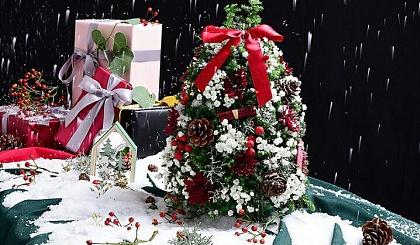 互动吧-圣诞节,DIY亲子花艺课程——圣诞树来啦!