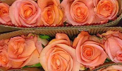 互动吧-宜花仓库开放日-近距离接触宜花供应链和鲜花品质