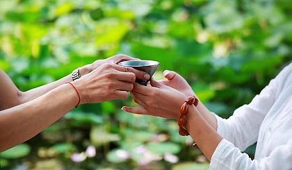 互动吧-【2019茶圈斗茶赛报名中】来尝尝鲜,今年的茶叶是否都挺好