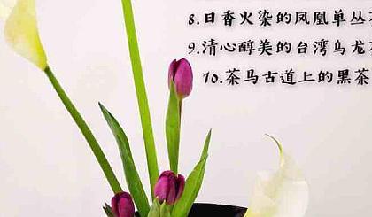 互动吧-半日塘初识中国茶系列之广东乌龙