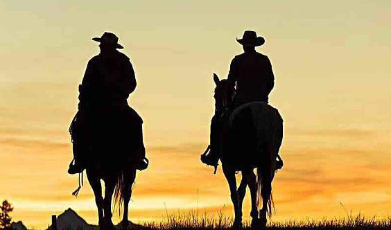每日制户外骑马,野骑,马背情缘(让贵族活动缘聚你我)