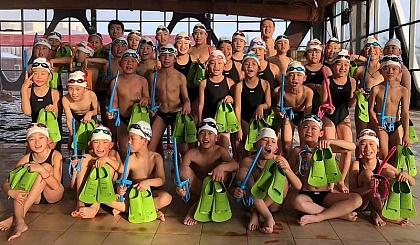 互动吧-暑假游泳培训开始报名啦!