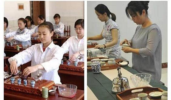 紧缺性人才可享受政策补贴,茶艺师初中高级火热报名中......
