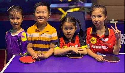 互动吧-成长体育-少儿乒乓球培训体验课