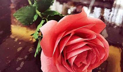 互动吧-DIY鲜花,为祖国献礼