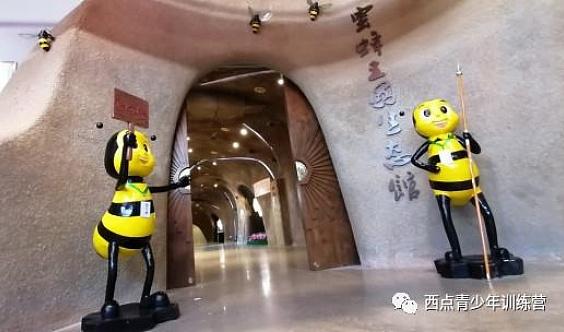 走进奇妙的蜜蜂王国,探索万古不衰之谜