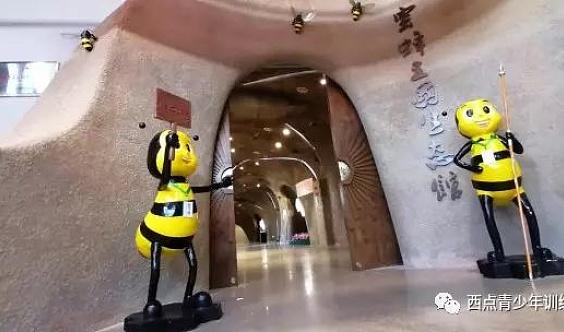 探索蜜蜂王国