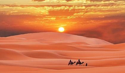互动吧-沙漠之花生命绽放之旅