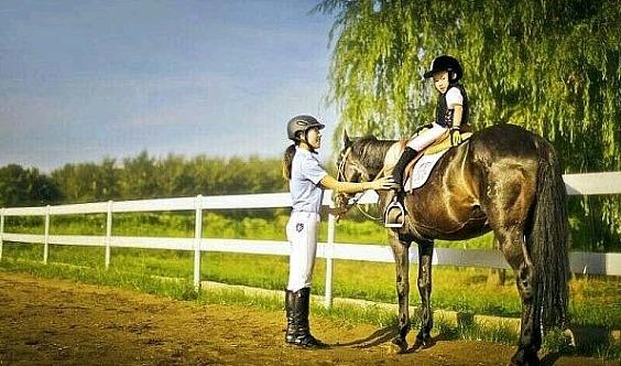 青少年马术教学试骑体验