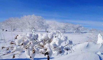 互动吧-【元旦3天 友行友派】雪乡雪谷,打雪仗爬雪山一起过大年!