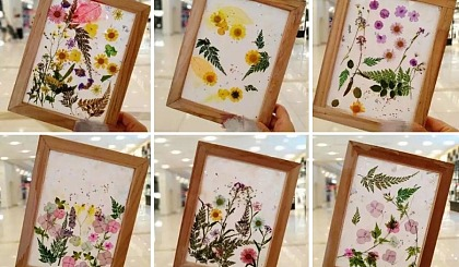 互动吧-古法造纸之最美花草纸+创意美术课1节团购价:49.9元