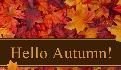 互动吧-感受秋天——亲子游园会