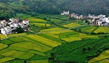 互动吧-第五届中国乡村文明发展论坛 ——新回乡运动:乡村振兴的新希望、新路径