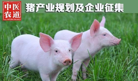 中医农道猪产业规划及企业征集