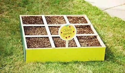 互动吧-一米菜园体验