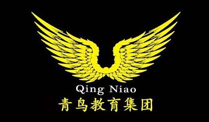 互动吧-青鸟教育集团大杨镇分校开始报名啦!