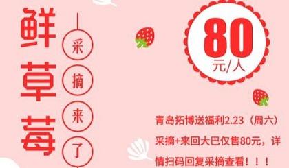 互动吧-听说城阳的一家草莓随便吃你们怎么看!!