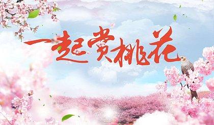 互动吧-观十里桃花●赏无边春色!桃花岛邀您共赴一场春日桃花宴!