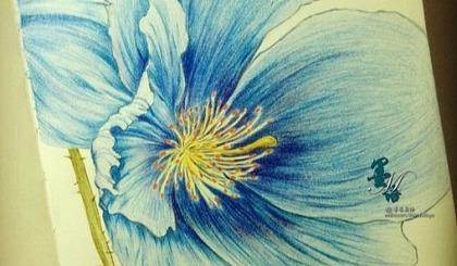 互动吧-感受艺术之美——妈妈素描彩铅报名