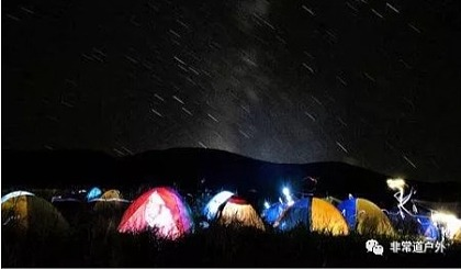 互动吧-【野营季】六一相约,一场星光与玫瑰花的盛会!