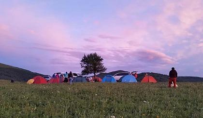 互动吧-【背包客乌托邦】孤石牧场野营 徜徉金莲花海洋