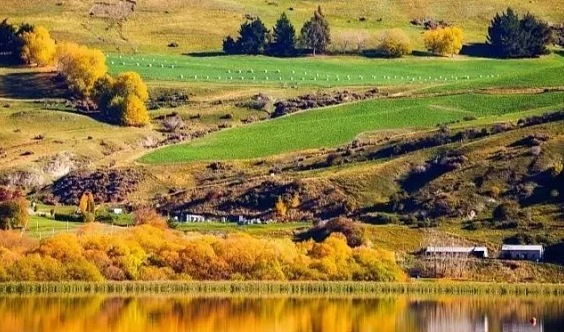 融沃采風~2020-3月最美秋天新西兰