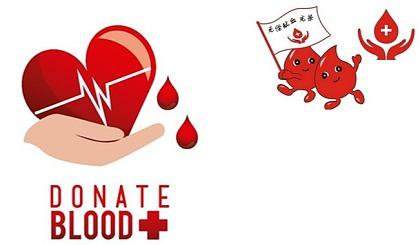 互动吧-献血报名