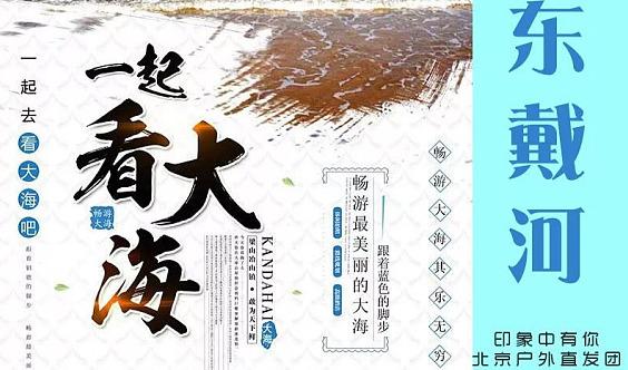 2日【东戴河】相约东戴河,悠悠海边游,品海鲜大餐,休闲行摄!