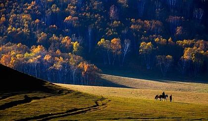 互动吧-已成行— [坝上草原]金山岭长城徒步 乌兰布统草原撒欢 5天4晚纯嗨之旅