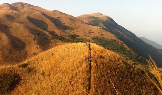 1天游【周末】惠州大南山大草坡穿越、满山遍野芦苇荡、全程茅草路山野徒步、在路上、才能感受沿途美景