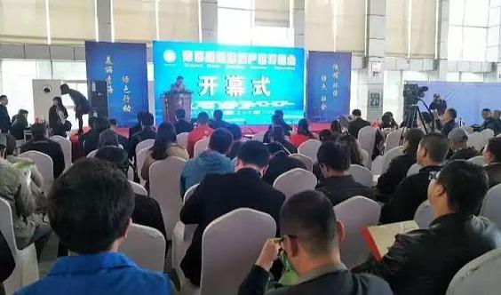 2020中国青海第六届建筑建材及装饰博览会
