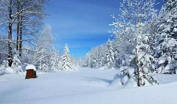 东北雪线:长白山脉-雾凇岛-老里克湖穿越-中朝边境-镜泊冬捕-雪乡-亚布力-哈尔滨7日活动