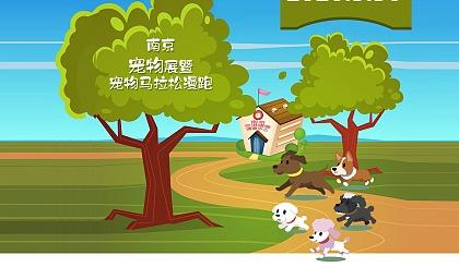 互动吧-2020南京宠物展暨宠物马拉松/篝火晚会