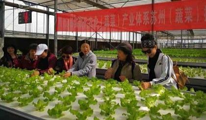 互动吧-东湖大郡绿色先锋-参观学习漕湖农场基地活动
