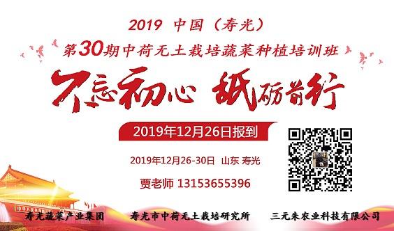 中国(寿光)第30期中荷无土栽培创新农业培训班
