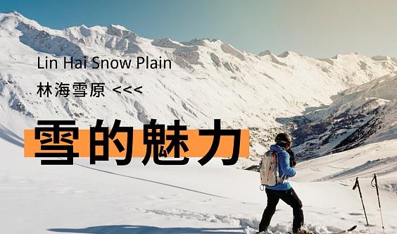 乐行/首届林海雪原                                        徒步跨年挑战赛正式开启