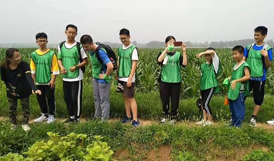 新泰杨沙沟农事体验、传统家风活动