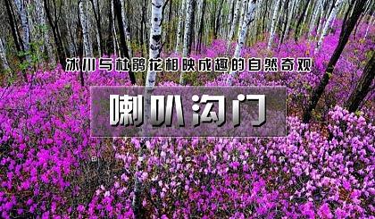 互动吧-【周末1日●喇叭沟门】高山杜鹃花海の穿越原始白桦林 休闲踏青赏花活动