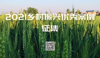 互动吧-2021乡村振兴优秀案例征集